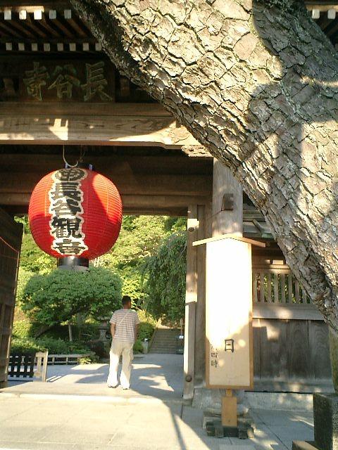4-01)鎌倉市長谷「長谷寺」山門。法事の正式名が書かれた看板を撮ったつもりだったが、反射して読めない。.JPG